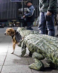 Croc-Eat-Dog Suit